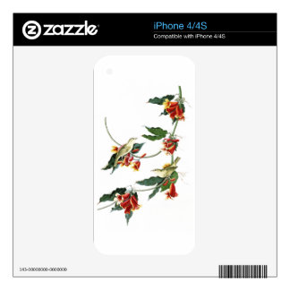 Rathbone Warbler John Audubon Birds of America iPhone 4 Decals