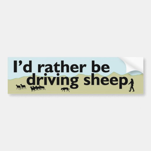 Rather Be Driving Sheep Bumper Stickers