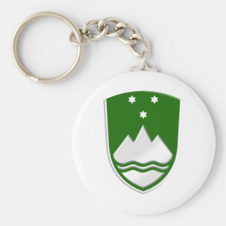 Rather stylish new Slovenija green soccer badge Keychain