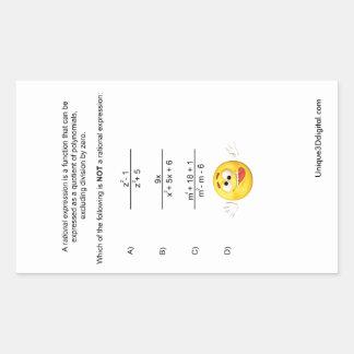 Rational Expression Rectangular Sticker