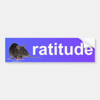ratitude bumper stickers