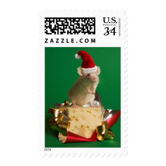 Ratón con el gorra de Santa con queso Sellos