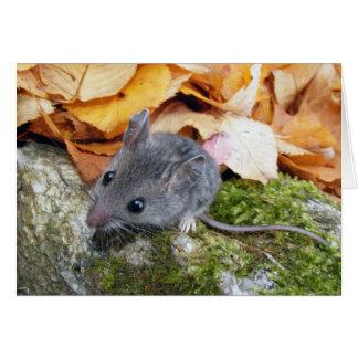 Ratón de campo minúsculo #2 tarjeta pequeña