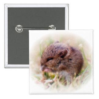 Ratón de campo muy joven que come un gusano pins