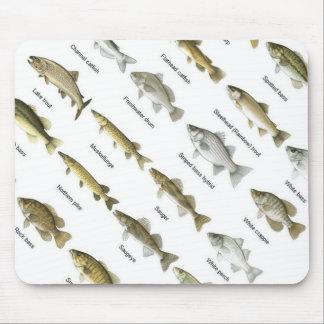 ratón de la carta de la pesca alfombrilla de ratones