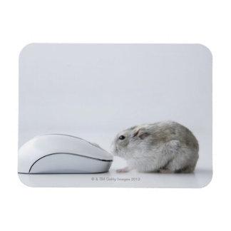 Ratón del hámster y del ordenador iman de vinilo