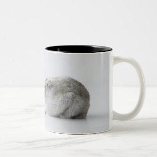 Ratón del hámster y del ordenador taza de dos tonos