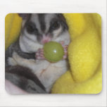 ratón del planeador del azúcar tapete de raton