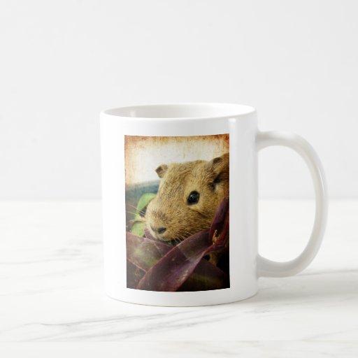 Ratón el conejillo de Indias Taza Básica Blanca