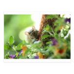Ratón en flores tarjeta postal