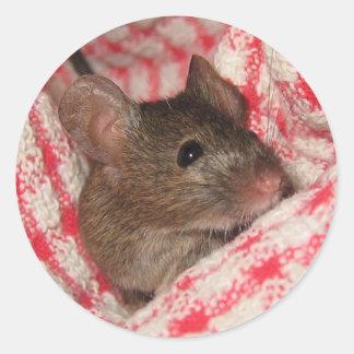 Ratón en la casa pegatina redonda
