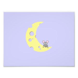 ratón en la luna del queso fotografía