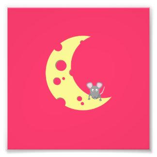 ratón en la luna del queso fotografías
