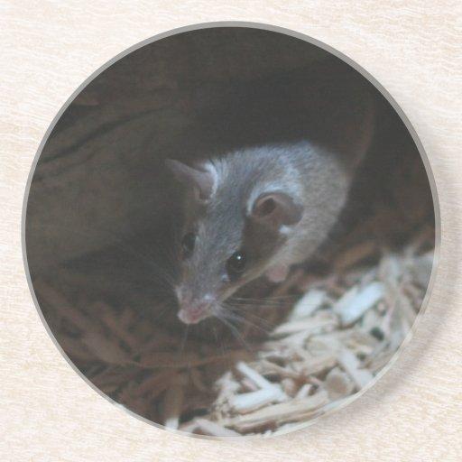 Ratón Posavasos Manualidades