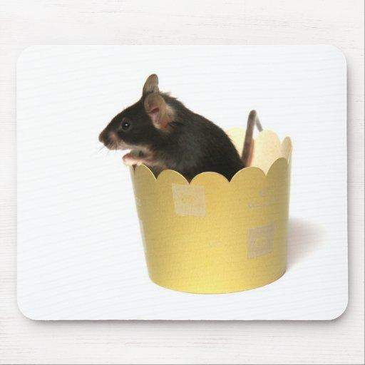 ratón tapete de ratón