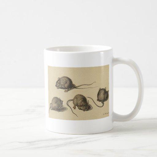 ratón taza clásica