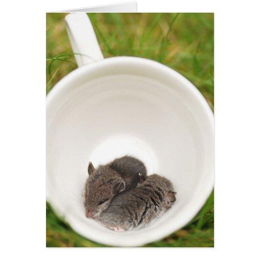 Ratones lindos del bebé de Sleepytime Tarjeta De Felicitación