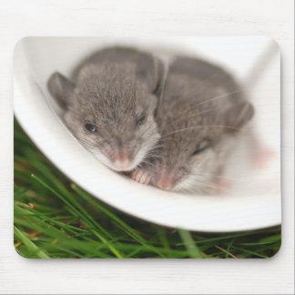 Ratones tan soñolientos del bebé alfombrillas de raton