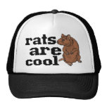 Rats Are Cool Hat