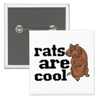 Rats Are Cool Pinback Button
