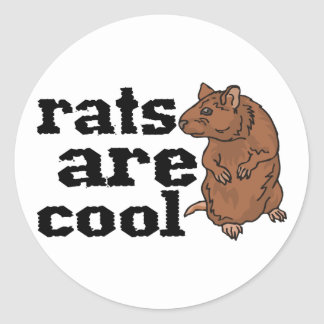 Rats Are Cool Sticker