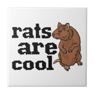 Rats Are Cool Tiles