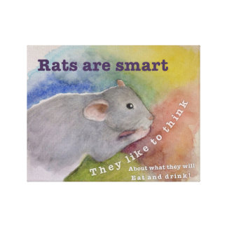 Rats Are Smart Canvas