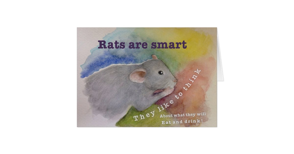 rats are smart greeting card zazzle. Black Bedroom Furniture Sets. Home Design Ideas