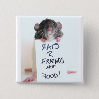 Rats R Friends Not Food 2 Button