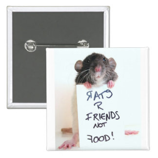 Rats R Friends Not Food 2 2 Inch Square Button