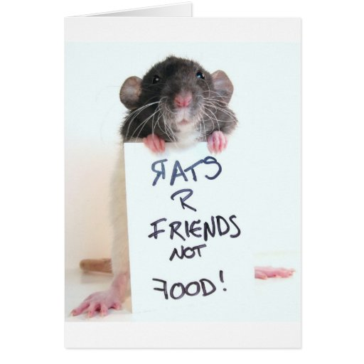 Rats R Friends Not Food 2 Greeting Card