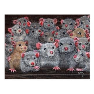 Rats Rattie Reunion 2 Postcard