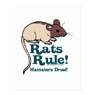 Rats Rule Postcards