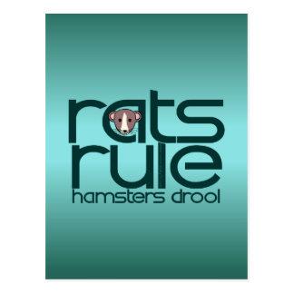 Rats Rule Postcard