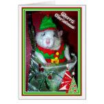 Rattie Elf Cards