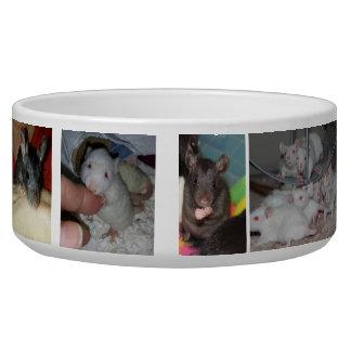 Rattie Large Pet Bowl