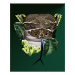Rattle Snake Face Poster