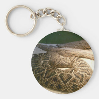 Rattle Snake Key Chains