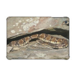 Rattlesnake at Shenandoah National Park iPad Mini Retina Covers