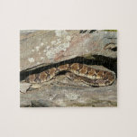 Rattlesnake at Shenandoah National Park Jigsaw Puzzle