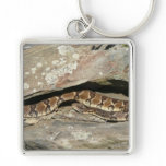 Rattlesnake at Shenandoah National Park Keychain