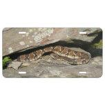 Rattlesnake at Shenandoah National Park License Plate