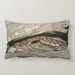 Rattlesnake at Shenandoah National Park Lumbar Pillow