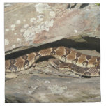 Rattlesnake at Shenandoah National Park Napkin