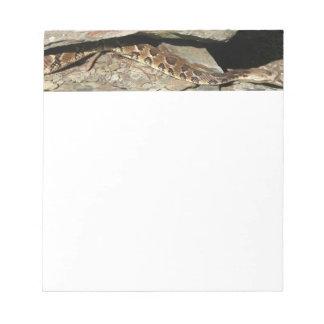 Rattlesnake at Shenandoah National Park Notepad