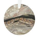 Rattlesnake at Shenandoah National Park Ornament