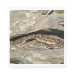 Rattlesnake at Shenandoah National Park Paper Napkin