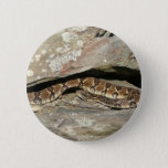 Rattlesnake at Shenandoah National Park Pinback Button
