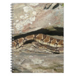 Rattlesnake at Shenandoah National Park Spiral Notebook