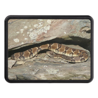 Rattlesnake at Shenandoah National Park Tow Hitch Cover